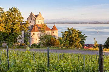 Burg Meersburg am Abend