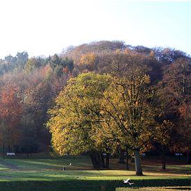 Kleve, Forstgarten von Andrea Meyer