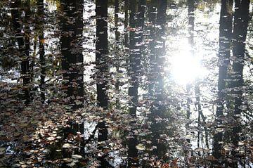 Reflexion von Bäumen mit Herbstlaub von Jessica van den Heuvel