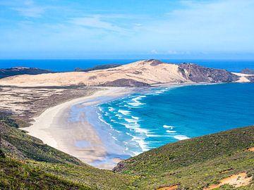 Het Noordelijkste Punt van Nieuw-Zeeland van Rik Pijnenburg