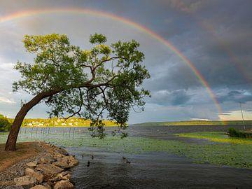 Regenbogen über Sigtuna, Schweden von Bert Cornelissen