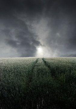stormlandschap van Henk Speksnijder