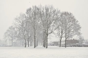Sneeuw in winterlandschap von Corinne Welp