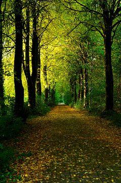 Jahreszeiten - Herbst sur Iwona Sdunek alias ANOWI