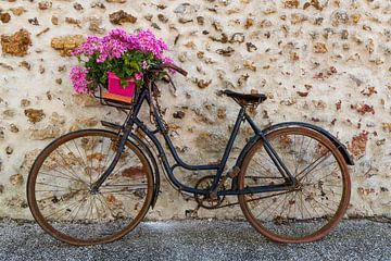 Oude fiets met bloemenmand van Daan Kloeg