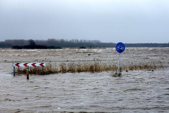 Groningen / Lauwersoog / Hoog water bij het Lauwersmeer / 2012
