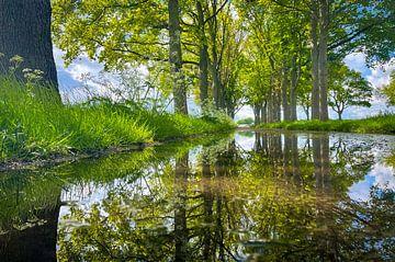 Spiegelweg von Jeroen Smit