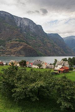 Noorse huisjes von Bas Nuijten