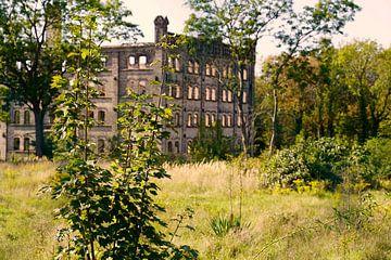 Ruïne van het opslaggebouw van het molencomplex Böllberg in Halle in Duitsland van Babetts Bildergalerie