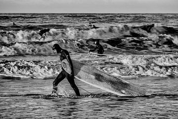 Surf Dudes van Rogier Steyvers
