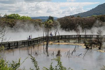 Kuirau Park Rotorua Nieuw Zeeland van Tineke Mols