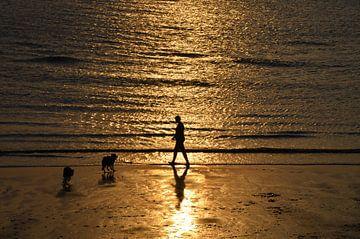 Strandspaziergang mit Hunden von Corinna Vollertsen