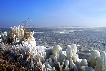 Ijs bij de Nederlandse kust- winterweer. van Jarretera Photos