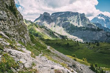 Zomer Alpen Landschap van