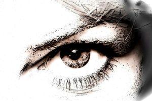 Your eye (3)