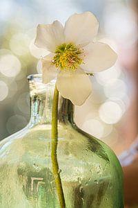 Bloem in groene vaas van Ingrid van Wolferen