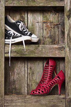 schoenen van