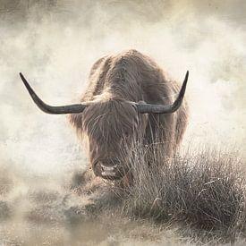 Schottische Highlander-Kunst im Nebel von KB Design & Photography (Karen Brouwer)