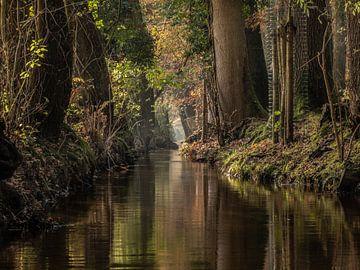 Ruisseau Staverdense sur Michiel Leegerstee