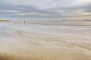Waddenzee bij Texel van