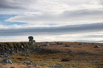 Rock auf einem verlassenen Plateau von Barbara Brolsma