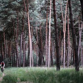 Eenzame fietser in dennenbos van Ellen van Drunen