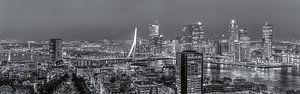 Nachtpanorama skyline Rotterdam in zwart-wit