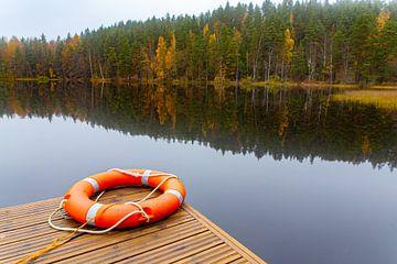 Landschap in herfst met reddingsboei bij meer en bos in Finland van Ben Schonewille
