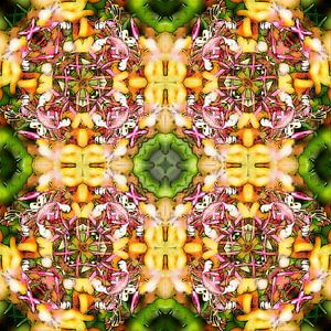 Honeysuckle Square van Frans Blok