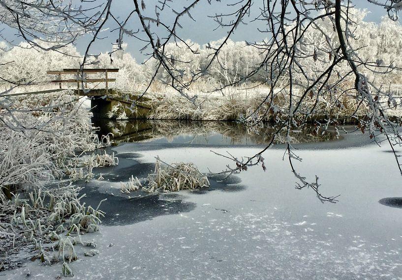 Winter van Albert Laverman