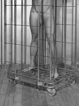 Nackter Mann steht in einem Rollcontainer #9135 von william langeveld