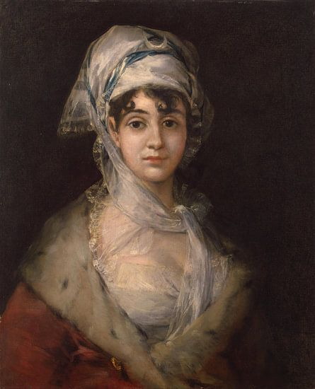 Francisco Goya - Antonia Zarate van Marieke de Koning