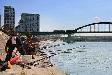 Vissers aan de Sava van Floor van der Vrande
