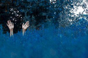 Drown van Marina Coric