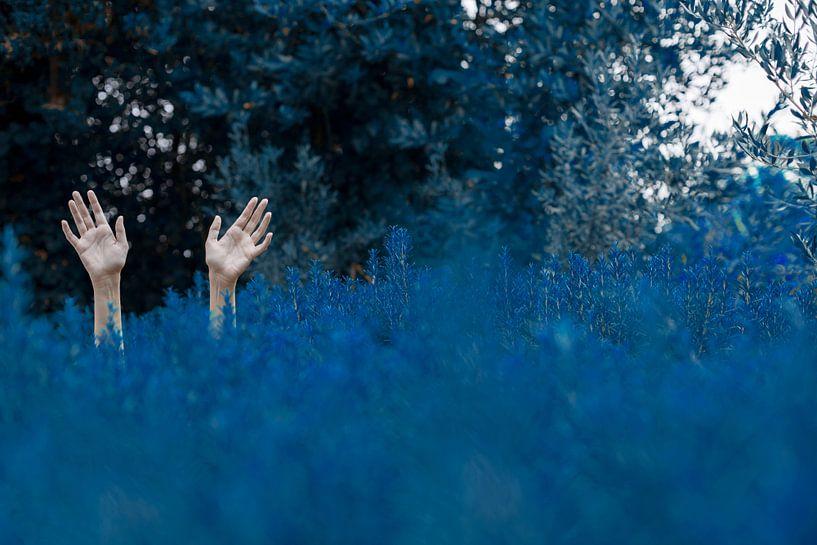 Drown von Marina Coric