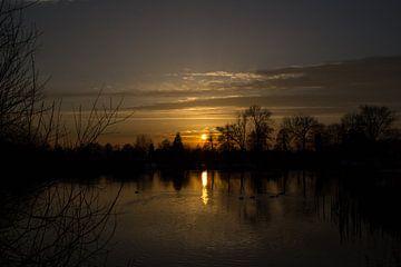 Calm evening van Ellen Middelkoop