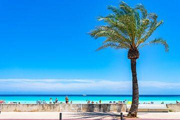 Prachtig zandstrand panorama aan de kust van Cala Millor van Alex Winter