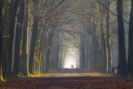 Jogging or walking van Jos Erkamp