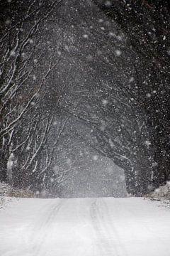 Sneeuw van Een Vrouwsel