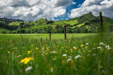 Groene heuvels van Coromandel, Nieuw-Zeeland von Martijn Smeets