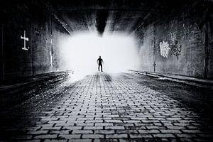Light in the Dark van Dennis Robroek