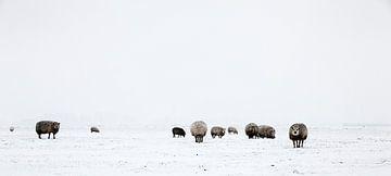 Winter in Holland6 van Henk Leijen