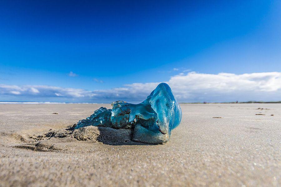 Art on the beach van Foto van Anno