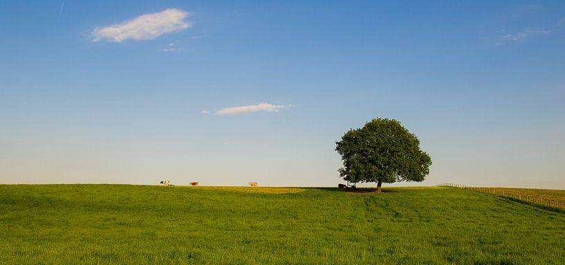 Panorama in het Limburgse Heuvelland van Photography by Karim