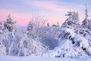 Winterwonderland van Daniela Beyer