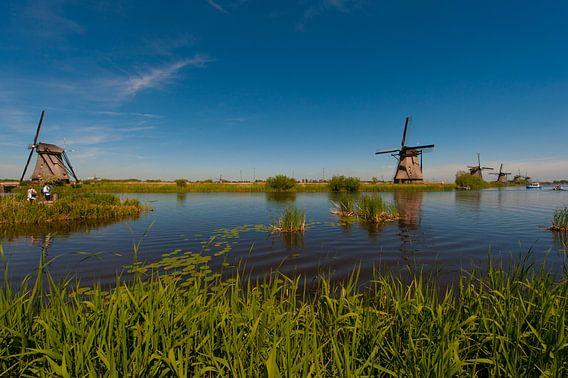 Windmolens Kinderdijk (windmills)
