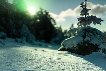 Warm zonlicht reflecterend op de sneeuw van André Post