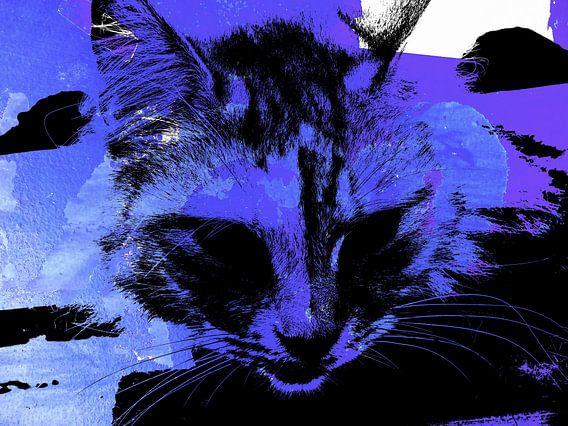 Kattenkunst - Kelly 1 van MoArt (Maurice Heuts)
