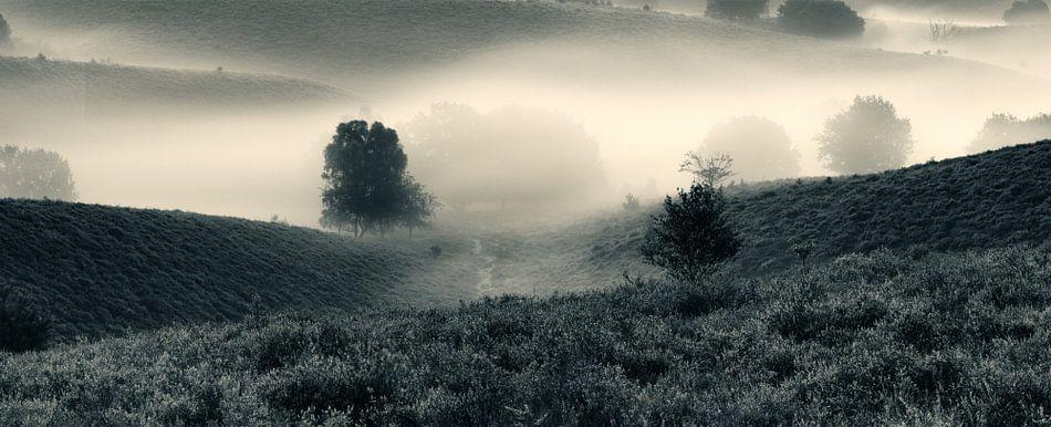 In de mist van Klaartje Huijben