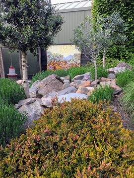Photo de nos clients: Olivenbäume mit gelbem Himmel und Sonne, Vincent van Gogh